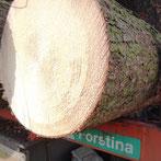 Holzernte Holzhandel Holztransporte
