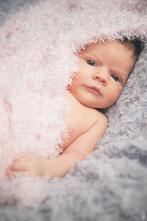 photographe bébé nouveau-né toulouse