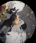 万成石偏光顕微鏡