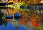 第17回「成田山公園紅葉まつり」