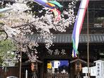 b' さん:東京都港区高輪・泉岳寺