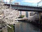 たけさん:東京都品川区 五反田駅そば
