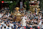 『神田祭』ページは画像をクリック!