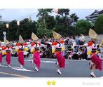 JPさん:新座阿波踊り