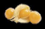 Physalis, Physalisaroma, Physalis Lebensmittelaroma