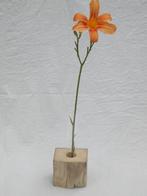 --LILIE-- Vase aus Treibholz mit Reagenzglas