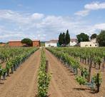 Domaine de Petit Roubié