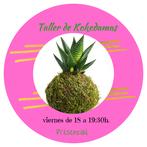 Cartel de taller mensual de kokedamas