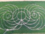 Das Oderdinger Maislabyrinth - Luftaufnahme der Wege 2015 durch das Maisfeld