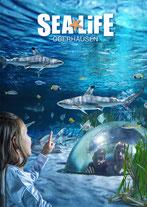 Sea Life Oberhausen Meine Schatzkarte