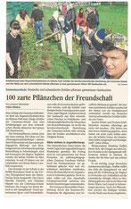 Deutsche und schwedische SchülerInnen pflanzen Bäume.