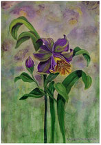 Acrylmalerei, Blüten malen