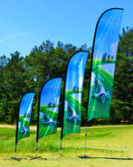 ProWing Flags, WinFlag