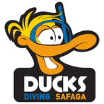 www.ducks-diving.com