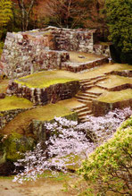 Popular ranking NO.1 of  Japanese castle ruins