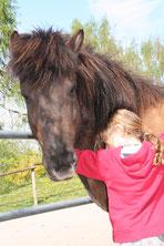 Verständnis für Tiermedizin bei Pferden