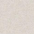 Essener Tiguane 1003-2