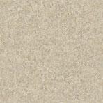 Essener Tiguane 1003-1