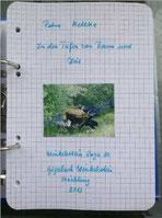 Petra Mettke/™Gigabuch Winkelsstein 10/Original 2013