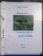 Petra Mettke/™Gigabuch Winkelsstein 13/Original 2014