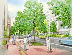 歩道整備に伴う街路樹の新緑イメ-ジ