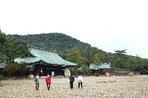 橿原神宮境内 銅ぶき屋根は本殿