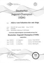 Akiras Jugend Champion Urkunde