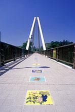 D.はねたき橋