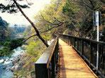 E.高津戸峡遊歩道