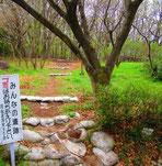 I.琴平山(登り口)