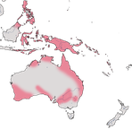 Karte zur Verbreitung der Großfußhühner