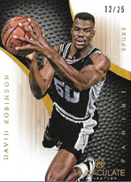 DAVID ROBINSON / Immaculate Silver - No. 91  (#d 12/25)