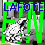 LAFOTE - Fin