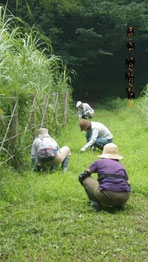 谷戸横断道の草刈り