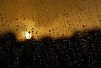 Regen Tropfen Sonne Kontraste