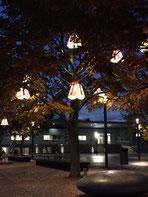 Westerwaldplatz am Abend