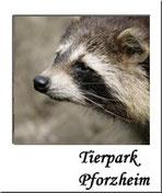 Tierpark Pforzheim