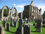 Die Kathedrale von Elgin (Schottland) wird von ausgedehnten Gräberfeldern umlagert...