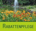 Rabattenpflege | Galabau Hoppe Bernau
