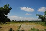 河原塾超が行く、北インド。のどかな田舎の風景が広がる。