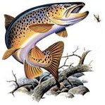 cadeau pêcheur truite