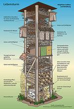 Grafik Lebensturm