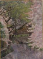 桜(近江八幡)  パステル15号