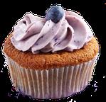 bestes aroma für blaubeer muffins, bester aromenhandel, grösster aromenhandel, billigster aromenhändler schweiz
