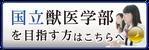 医歯薬専門予備校インフィア(HOME)