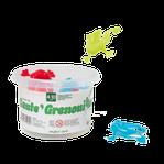 Saute' Grenouilles