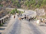 Le Népal en famille, trek Nepal avec enfants