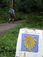 Fent camí per Astúries