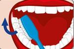 Elektrische Zahnbürste für das richtige Zähneputzen
