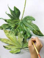 植物の表情を探る課題